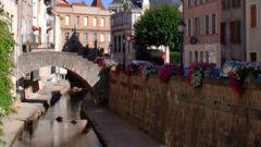 Trail kalender Frankrijk Auvergne-Rhône-Alpes Loire Trailrun in Juni 2020 > Course Nature du Vizézy (Montbrison)