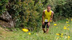 Trail calendar France   Trailrunning race in November 2021 > Trail du Curcuma (Saint-Joseph)