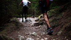 Calendrier trail Belgique   Trail en Avril 2021 > Trail des Lions (Habay)