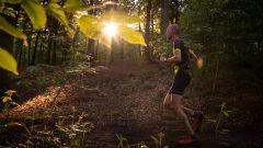 Calendrier trail Belgique   Trail en Février 2021 > Enclusa Trail (Mont-de-l'Enclus)