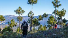 Trail kalender Frankrijk Provence-Alpes-Côte d'Azur Alpes-Maritimes Trailrun in Februari 2021 > Trail d'Èze (Èze)