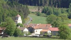 Trail kalender Frankrijk Auvergne-Rhône-Alpes Haute-Loire Trailrun in Juli 2021 > Les Sources de la Borne (Felines)