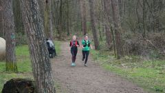 Trail calendar the Netherlands   Trailrunning race in October 2020 > Herkenbosch Trail 2020 (Herkenbosch)