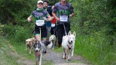Calendrier trail France   Trail en Octobre 2020 > Vét'O Trail (Marcy l'étoile)