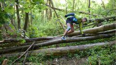 Trail calendar France Normandie Seine-Maritime Trailrunning race in April 2021 > Le Radicatrail (Lillebonne)