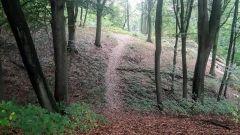 Calendrier trail Belgique   Trail en Novembre 2020 > Diatrail Kluisbergen (Kluisbergen)
