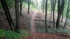 Calendrier trail Belgique   Trail en Juin 2021 > Diatrail Kluisbergen (Kluisbergen)