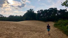 Calendrier trail Pays-Bas   Trail en Juillet 2021 > Leenderbos Trail (Leende)