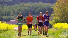 Trail calendar France Grand Est Marne Trailrunning race in May 2021 > La Mai Zonnaise (Muizon)