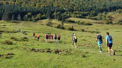 Trail kalender Frankrijk Occitanie Hautes-Pyrénées Trailrun in September 2020 > Trail du Pacte des Loups (Esparros)