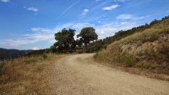 Calendrier trail France   Trail en Février 2021 > Trail de Peygros (Peymeinade)