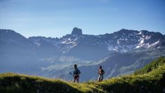 Trail calendar France   Trailrunning race in July 2021 > Pierra Menta (Arêche)