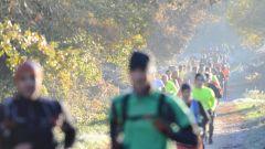 Trail calendar France Pays de la Loire  Trailrunning race in December 2020 > Course nature de la Vie (Le Poiré sur Vie)