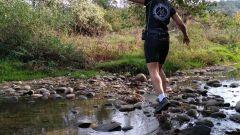 Calendrier trail France   Trail en Septembre 2020 > Trail des Tard-Venus (Brignais)
