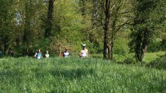 Calendrier trail France   Trail en Mai 2020 > Trail de la Boulogne (Les Lucs-sur-Boulogne)