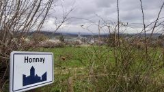 Trail kalender België   Trailrun in Maart 2021 > TRI-B TRAIL (Honnay)