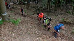 Trail calendar France   Trailrunning race in May 2020 > Trail des Verriers (GOETZENBRUCK)