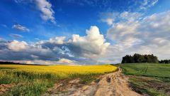 Calendrier trail Belgique   Trail en Octobre 2020 > La Zato'Belge (Slins)