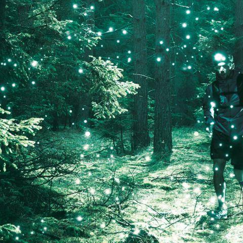The Christmas Night Trail  2020