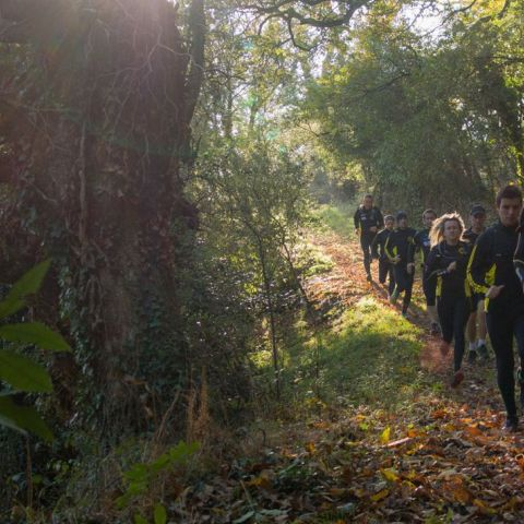 Cormaris Trail  2020