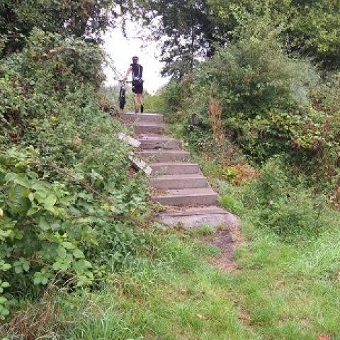 Faluintjes-trail  2019
