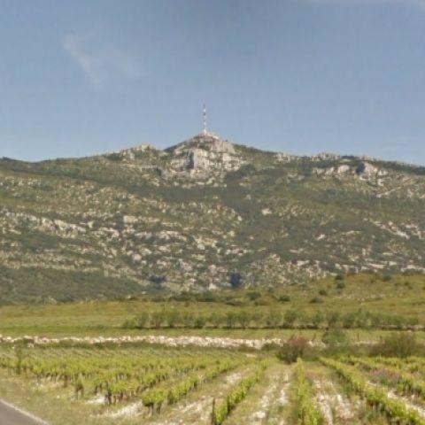 Vino trail de l'AOC Terrasse du Larzac  2020