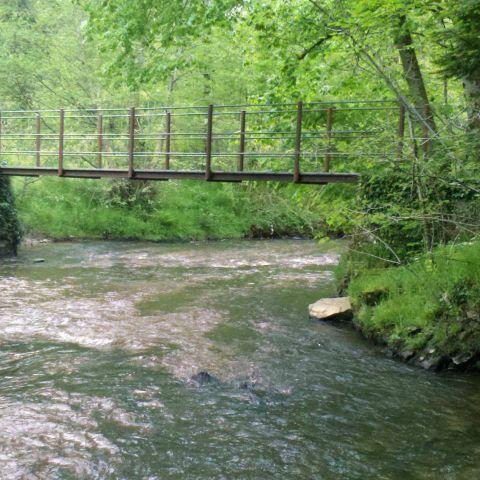 Trail Nature d'Isle  2020