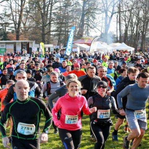 Trail des Terroirs Vosgiens  2020
