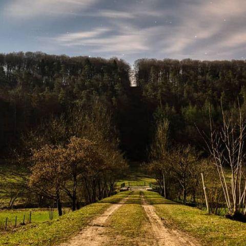 Aischdall Trail  2016