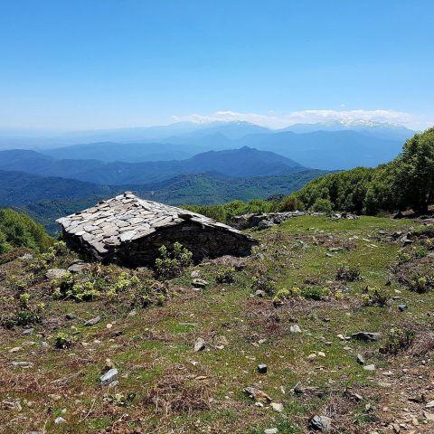 Alisgianinca Trail  2019