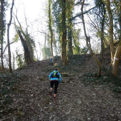 Trail des Bosses