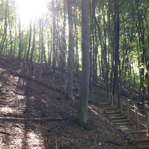 Trail des Mineurs  2016
