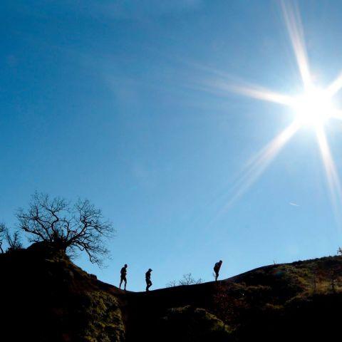 Trail des Ruthènes  2020
