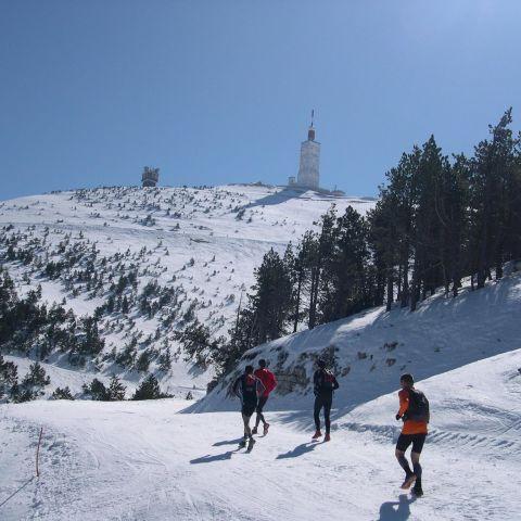 Ergysport Trail du Ventoux  2017