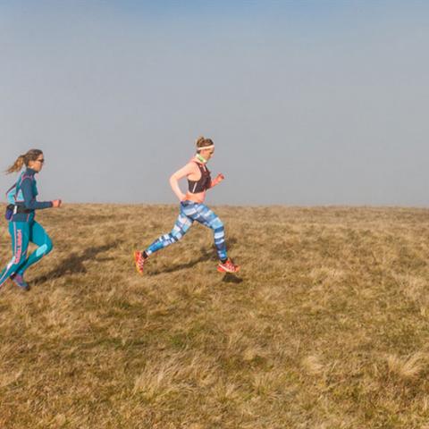 Munster trail  2019