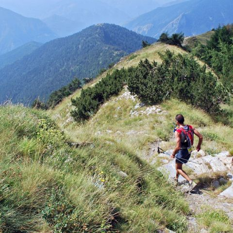 Trail du Cro  2020