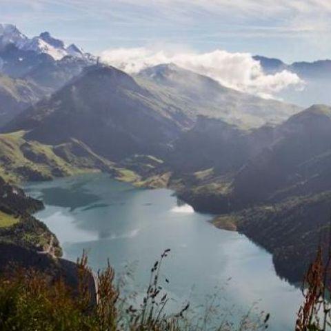 Trail de la Frison-Roche  2019