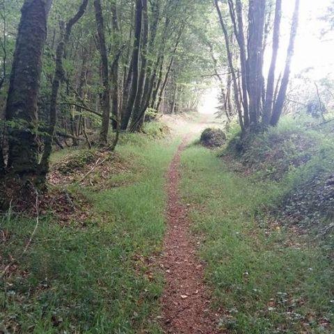 Trail de Guerlesquin  2018