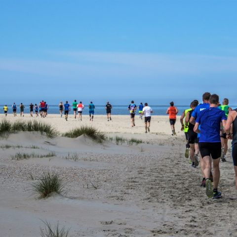 Trail by the Sea  2018