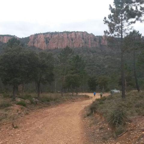 Trail des Mange-Lamberts
