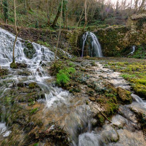 Courses Nature de Montsalès  2020