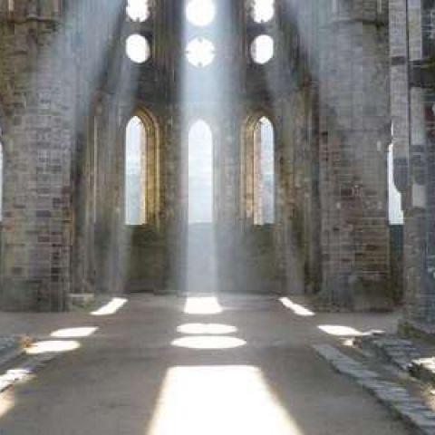 Trail des Cisterciens  2020