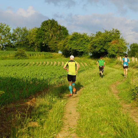 Trail et jogging des Papillons  2020