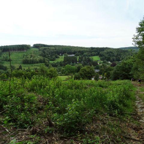 Trail de la Lesse  2013