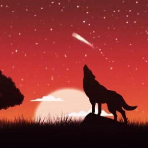 Entre Chien et Loup  2020
