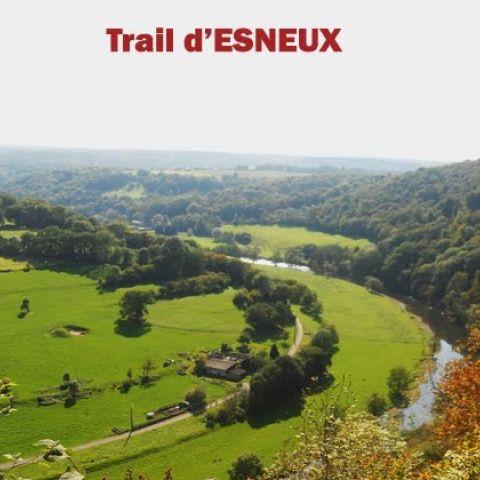 Trail d'Esneux  2015