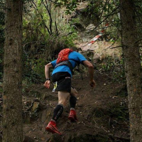 Trail de Gestel
