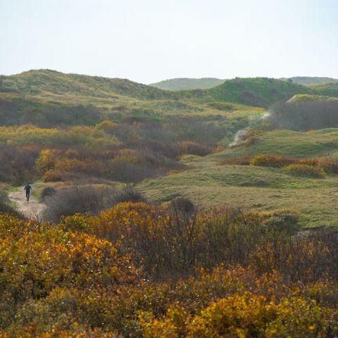 Graef Castricum Trail  2020