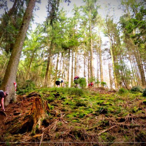 Trail des Idylles  2020