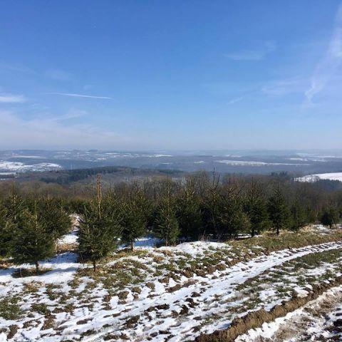 Trail de l'Ourthe